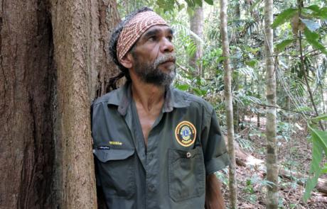 willie-brim-bulwai-cultural-custodian-rainforest